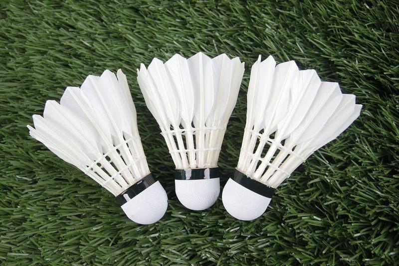 Profesjonalny sprzęt do badmintona